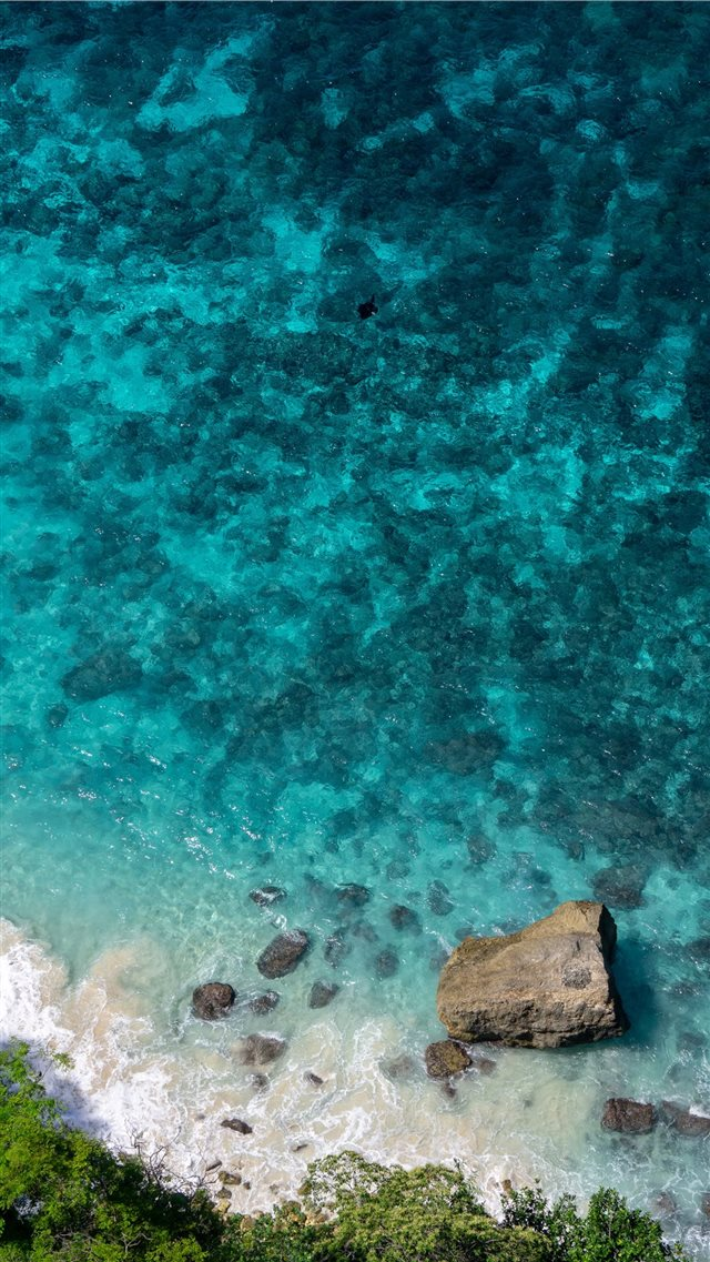 MANTA RAY OVER THE CLIFF [NUSA PENIDA  INDONESIA] iPhone 8 wallpaper
